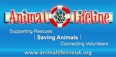 Animal Lifeline UK Forum